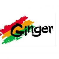 Рисунок профиля (Ginger fashion)