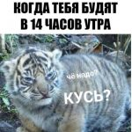 Рисунок профиля (Головяшкин Валерий Игоревич)
