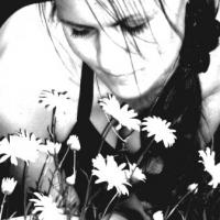 Рисунок профиля (Александрова Анастасия)