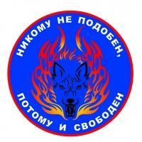 Рисунок профиля (Ирина Малинина)